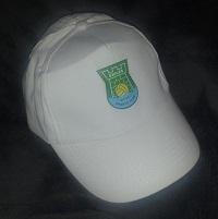 Cap-img4-200